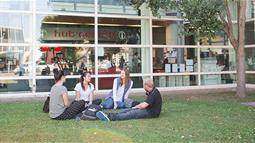 A photograph of a group of students sitting on the lawn at UCOL in Palmerston North